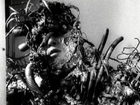 Metalphage human