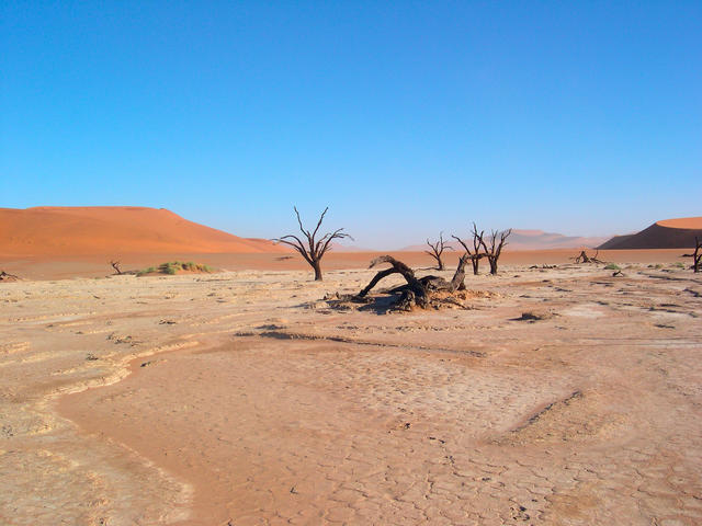 an introduction to the location and environment of the kalahari desert Introduction the kalahari basin lies within the larger kalahari desert  a  greater problem in southern africa where the kalahari basin is located (vogel et  al.