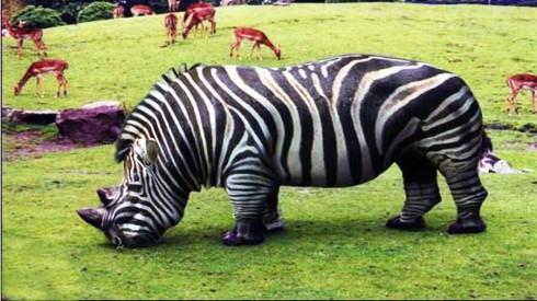 Hybrid Animal 3