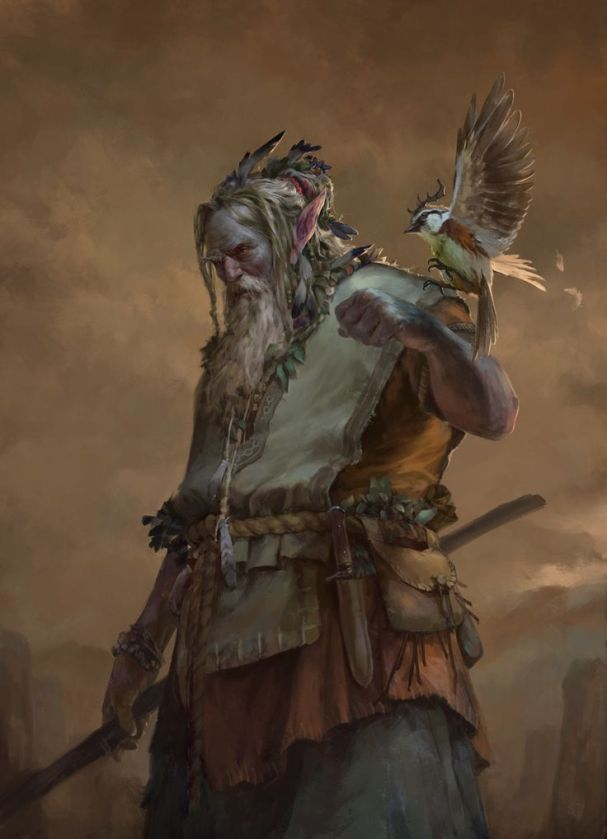 Druid 1